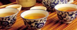 チェコのお茶文化